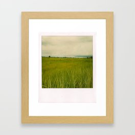 Adjumani Field Framed Art Print