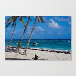 desert tropical beach Canvas Print