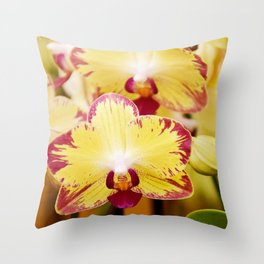 Close up Orchid #8 Throw Pillow