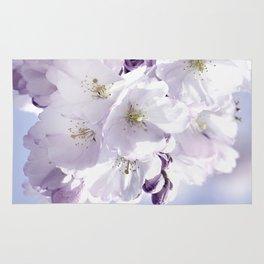 Spring 297 sakura Rug