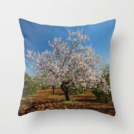 An Almond tree in flower Throw Pillow