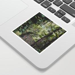 Hidden Jungle River Sticker