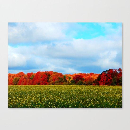 Light hits the Trees Beyond Canvas Print