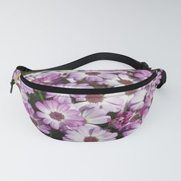 Cineraria Pink Fanny Pack