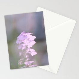 Pink Phlox Stationery Cards