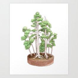 Foemina Juniper Bonsai Tree Colored Pencil Drawing Art Print