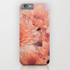 Chrysanthemum flowers 8605 iPhone 6s Slim Case