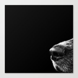 Sneaky Dog Canvas Print