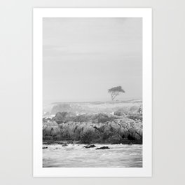 Tree, Coastline & Ocean Art Print