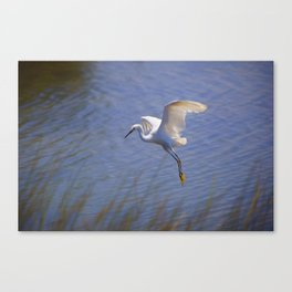 Graceful Landing Canvas Print