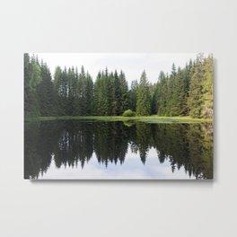 Nature #6 Metal Print