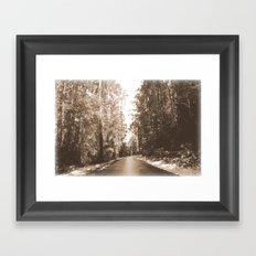 Along a forest Road Framed Art Print