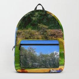Barton Springs at Zilker Park - Austin, Texas Backpack