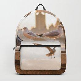 Take Flight Backpack