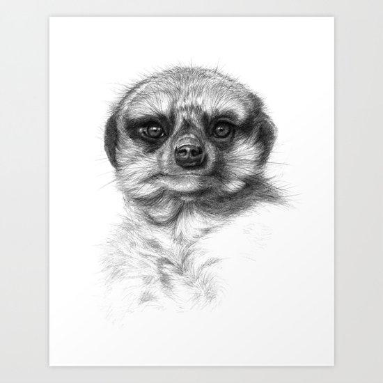 Meerkat Cub G2013-072 Art Print