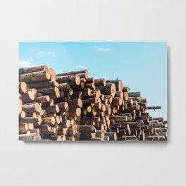 Little Bird on Pile of Felled Wood Logs Metal Print