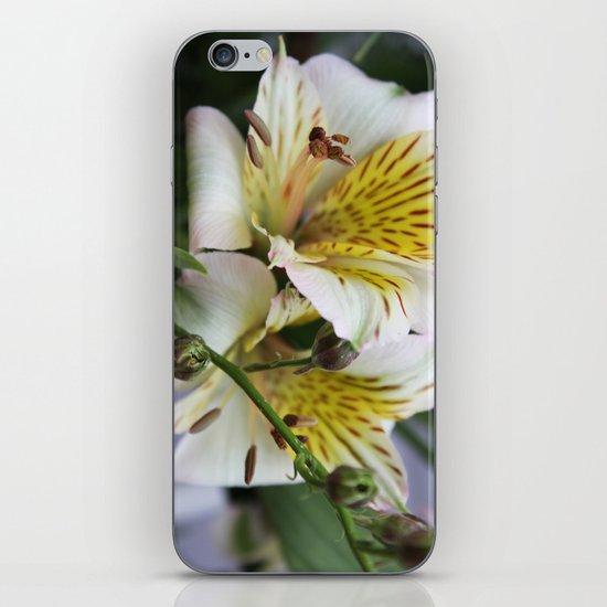 Freesia iPhone & iPod Skin