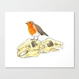 Robin and Rabbits Canvas Print