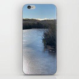 Viking Autumn iPhone Skin