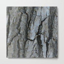 TEXTURES -- Fremont Cottonwood Bark Metal Print