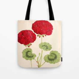 Double Zonal Pelargonium Vesta Vintage Flower Tote Bag