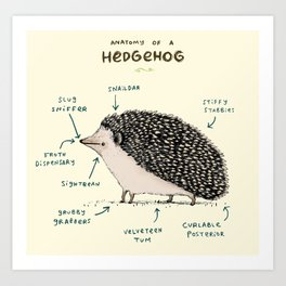 Anatomy of a Hedgehog Art Print