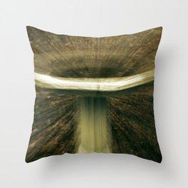 Birdbath Distortion Throw Pillow