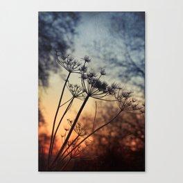xtra & ordinary Canvas Print