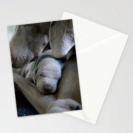 Dog by Nathalie SPEHNER Stationery Cards