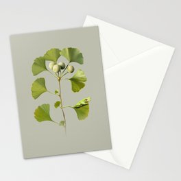 Ginkgo and Frog Stationery Cards
