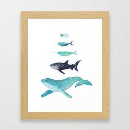 Ocean collection: Deep under the sea Framed Art Print