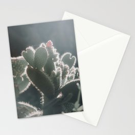 cactus hearts Stationery Cards