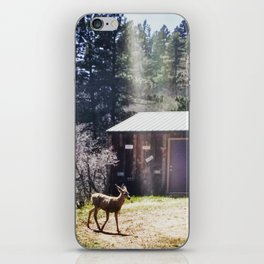 A Little Mountain Paradise iPhone Skin