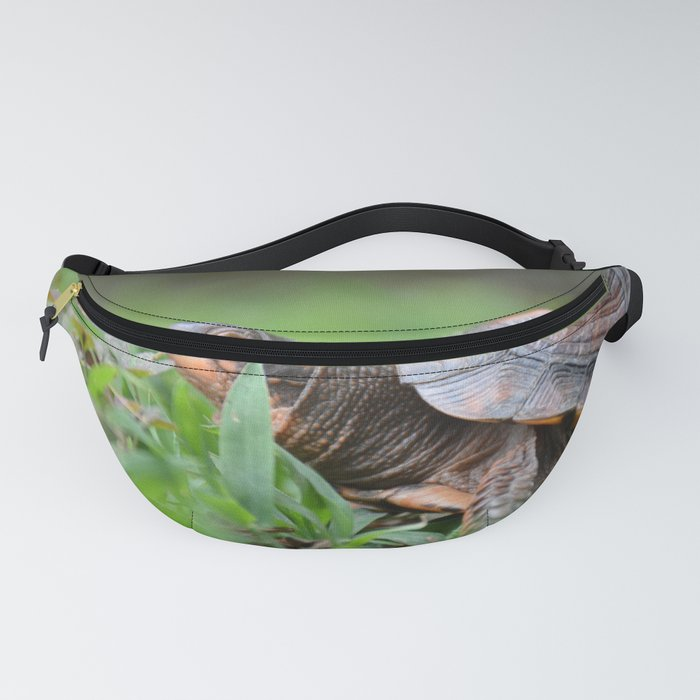 Box Turtle in the Garden Fanny Pack