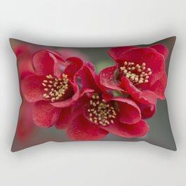 Red Chaenomeles flowers Rectangular Pillow