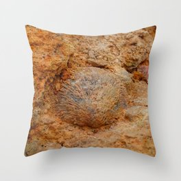 Shell Fossil II Throw Pillow