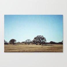 Lounge Canvas Print