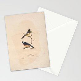 JP Giroud - North American birds (1841) -  Texan Finch &  Azure Capped Manakin Stationery Cards