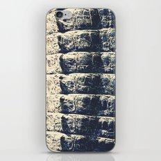 The Alligator Crawl iPhone & iPod Skin