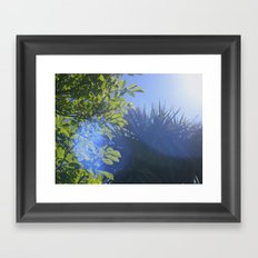 Sun/Trees Framed Art Print