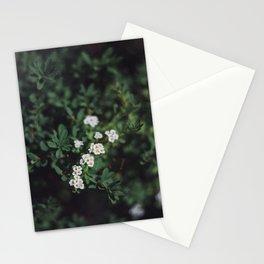 Backyard Flowers (3) Stationery Cards