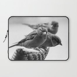 Sparrows On Chair Back Laptop Sleeve