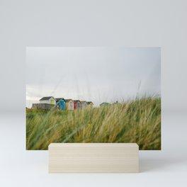 Sea Grass and Beach huts, Amble, Northumberland, England. Mini Art Print