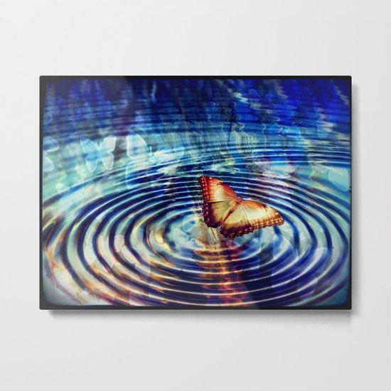 Butterfly Butterfly  Metal Print