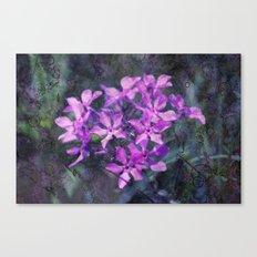 purple pink flower explosions Canvas Print