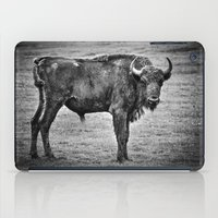 buffalo iPad Cases featuring Buffalo by davehare