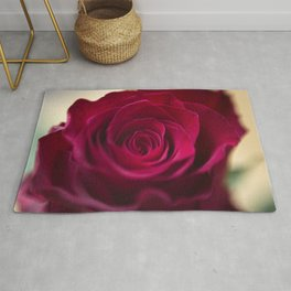 Centre of a red rose Rug