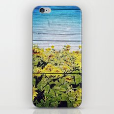 Blended Sunflowers iPhone & iPod Skin