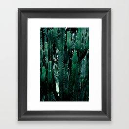 Cactus 07 Framed Art Print