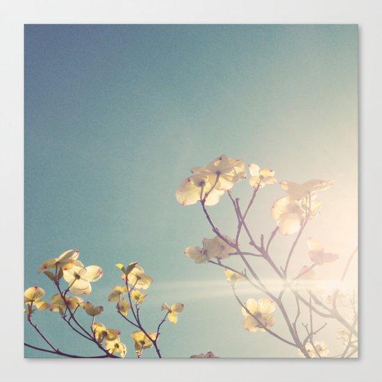 White Light Canvas Print